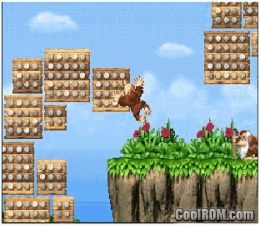 coolrom donkey kong