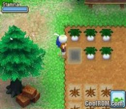 Harvest Moon DS - Grand Bazaar ROM Download for Nintendo DS / NDS