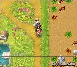 Rune Factory - A Fantasy Harvest Moon ROM Download for ...